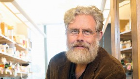 George Church's lab has reengineered the genetic code of the bacterium <i>Escherichia coli</i> to make it resistant to viral infection.