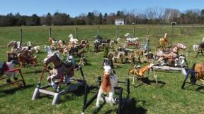 "The ""Rocking Horse Graveyard,"" in Lincoln, Massachusetts"