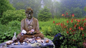 The Insight Meditation Society