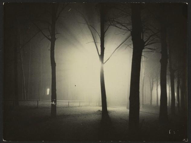 <i>Untitled</i> (Night View of Trees and Streetlamp, Burgkühnauer Allee, Dessau), 1928