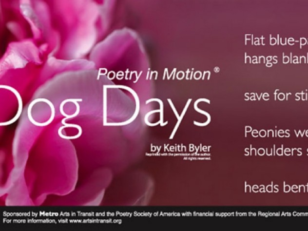 <i>Dog Days</i> by Keith Byler