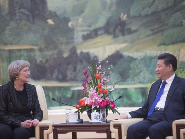 "President Faust and President Xi ""discussed a number of issues of mutual importance for China and Harvard,"" according to a University announcement."