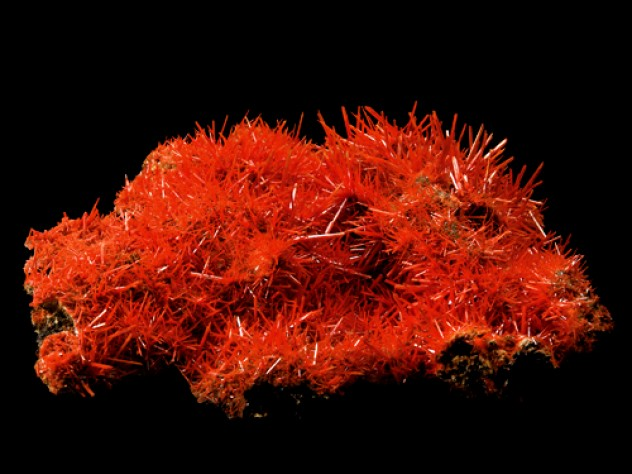 Crocoite from the Adelaide Mine in Tasmania