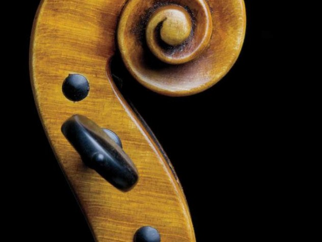 An ornate scroll on the neck of a violin.