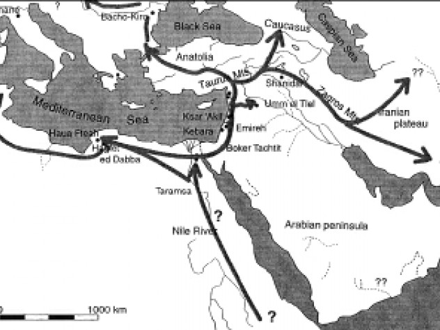 Colonization routes during the Middle Paleolithic were often similar to paths of dispersion during the Neolithic Revolution.
