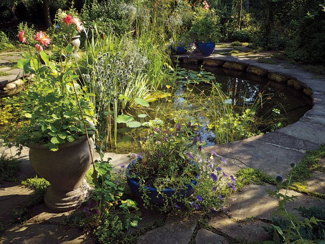The water garden, with surrounding planters,