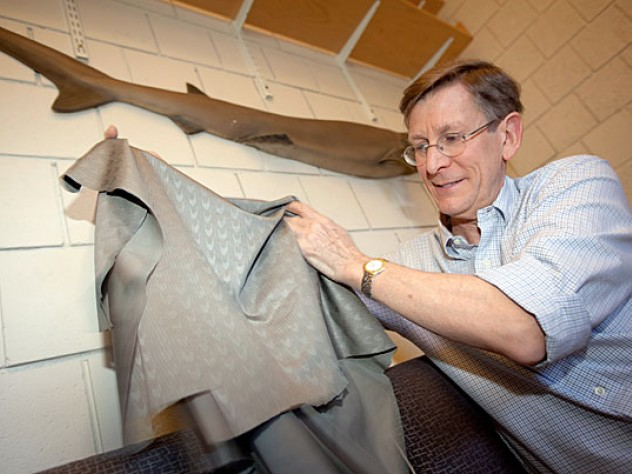 "Bigelow professor of ichthyology George Lauder in his lab with a model of a shark (above) and a sample of the ""sharkskin"" swimsuit fabric that he studied. Some Olympic swimmers favor the high-tech fabric, believing that it increases speed."