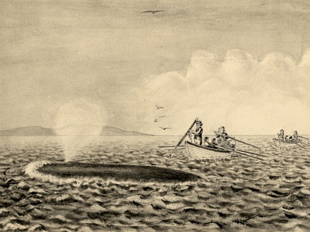 """The Whale breaking water and spouting at the surface. The boats have come up with it and the harpooner is about to strike."""