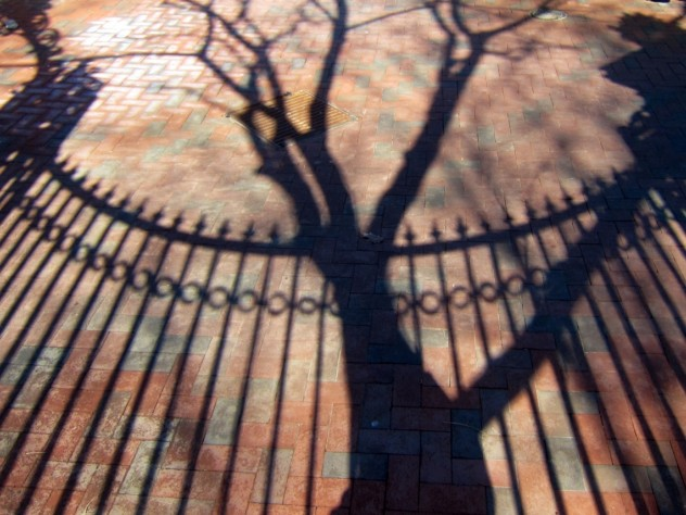 The curving silhouette and spear-tipped finials of the Class of 1876 Gate appear in shadow, along with the trunk and branches of a tree, on the brick path outside Harvard Yard. The gate's archway is visible in the upper left hand corner.
