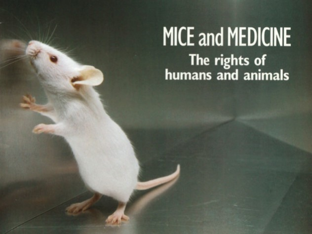 From the Archives: Animal Research | Harvard Magazine
