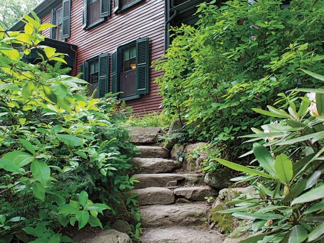 Rustic rock steps lead to a shady dell.