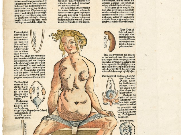 Heinrich Vogtherr the Elder's 1544 <i>Anatomy; or a faithful reproduction of the body of a female</i> goes further (see next image).