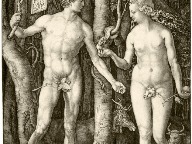 Dürer's 1504 <i>Adam and Eve,</i> a study of the perfect human body, from early in his career, presaged lifelong interests: from studies of human proportion to naturalistic renderings of plants and animals.
