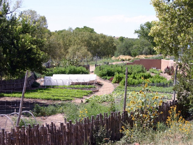 Wade tends her three-acre garden, with a 1,200-square-foot greenhouse with help from one other gardener.