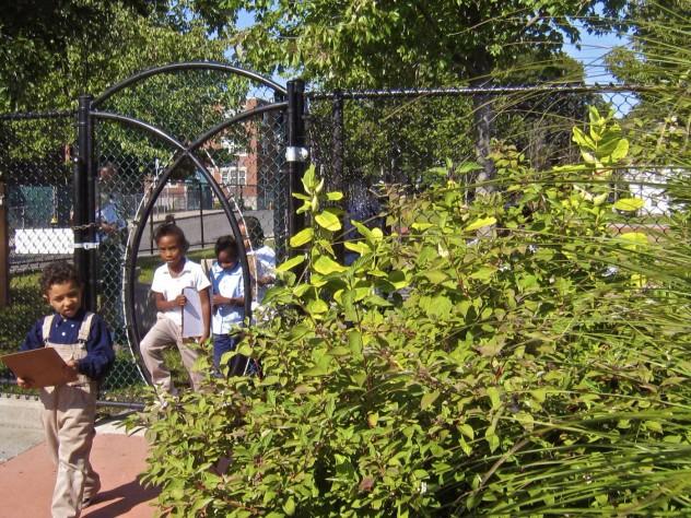 Miller has designed outdoor classroom spaces for several Boston Public Schools.