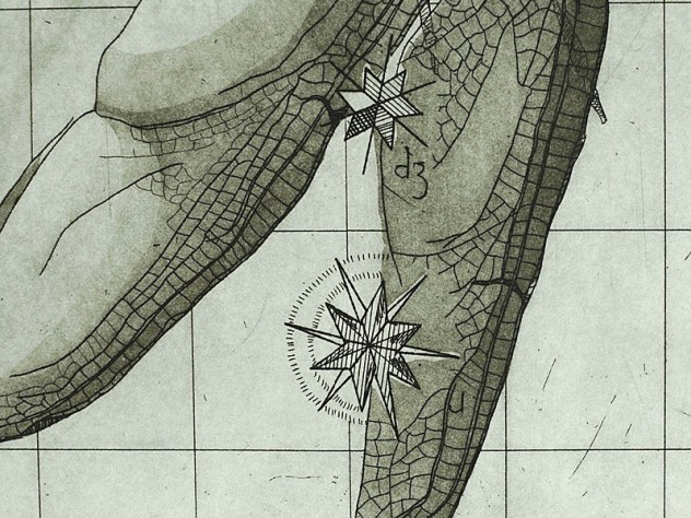 Detail from print