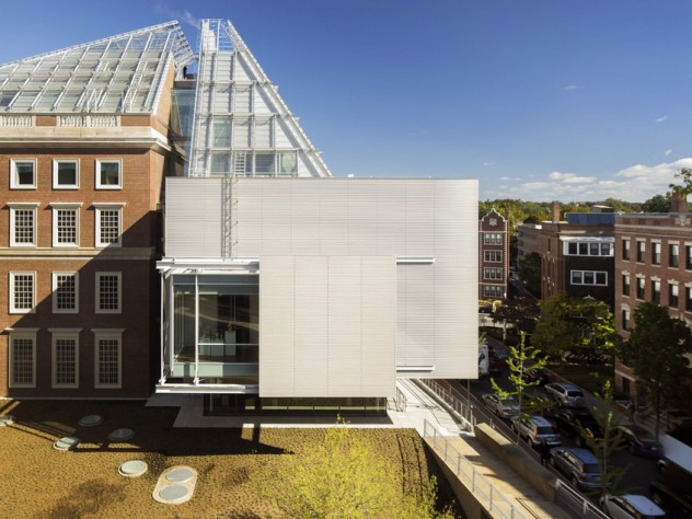 The Winter Garden galleries of the Harvard Art Museums were designed as places for visitors to rest their minds and eyes, says architect Renzo Piano.