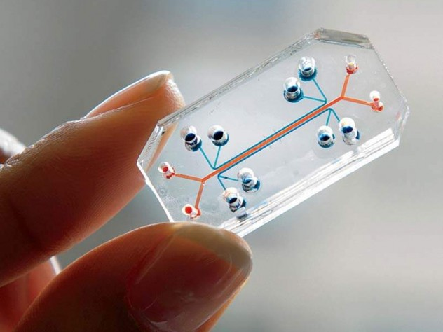 The Wyss Institute team seeks to build and link 10 human organs-on-chips to simulate whole-body physiology.