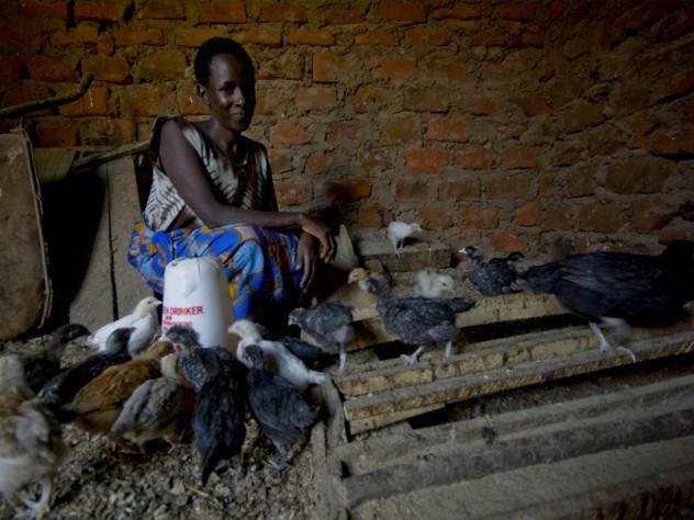 Nshemereirwe in her chicken coop