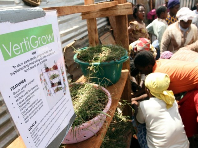 Women in Kibera's Gatwekera section plant seeds in a prototype of the VertiGrow planter, designed to maximize vertical space and enable growing food without much land. The original prototype, designed at Harvard, was made of PVC pipe. In Kibera, Nowak asked the women how to construct the planter out of cheap, readily available local materials.