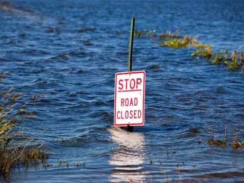 "A traffic sign with the words ""Stop Road Closed"" submerged in several feet of water"