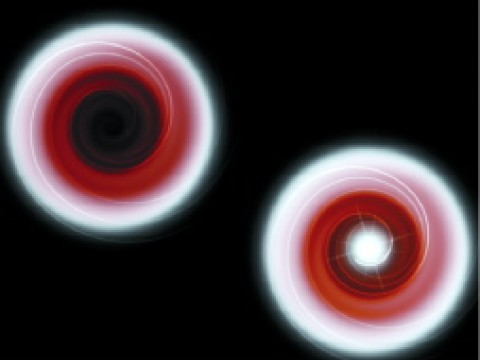 "Illustrations depict gas from a sun-like companion star being drawn in a swirling pattern into a black hole (top) and onto a neutron star (bottom). In both cases, as the gas nears the central object, strong gravitation weakens the light, making it appear redder and dimmer. When the gas strikes the solid surface of the neutron star, it glows brightly in x-rays. But after crossing the ""event horizon"" of the black hole, it produces no x-rays, since a black hole has no surface."